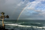 Rainbows @ Shelly Beach, NSW