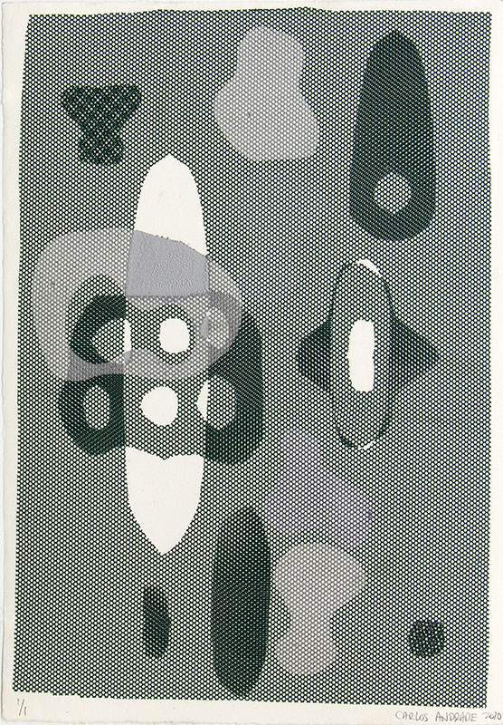 """""""Untitled"""", 2010. Monotype on fabric and paper. 22"""" x 15""""."""
