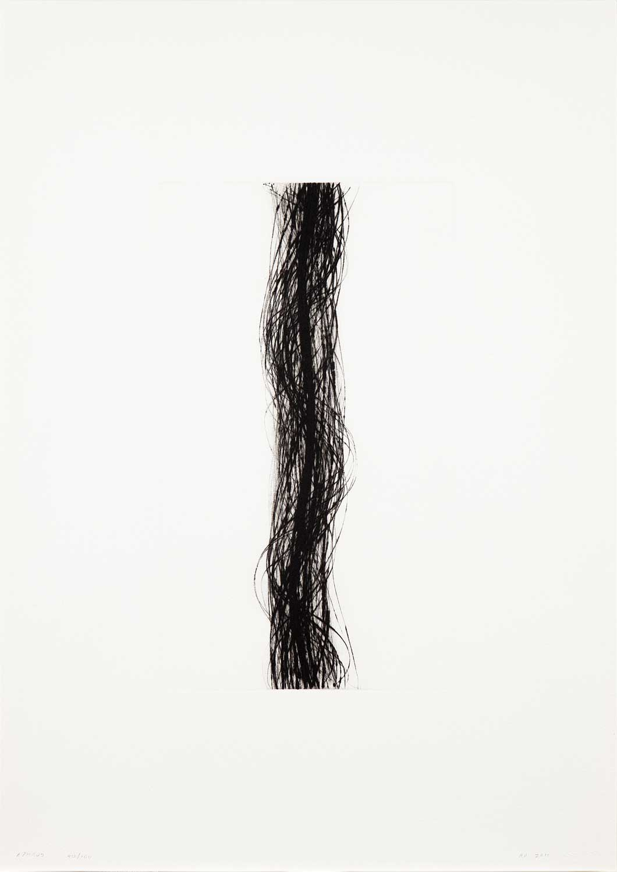 """Rupert Deese: """"Aphros"""", 2011. Drypoint"""