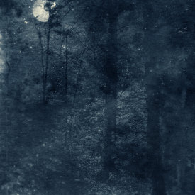 """""""Nocturnal Landscape 811"""", 2016. Photograph printed on Hahnemühle Rice Paper, mounted to Stonehenge paper. 22"""" x 18"""", edition of 3."""