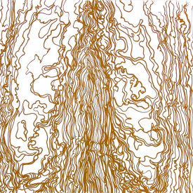 """Wood Drip lll"", 2007.  Photo-etching, edition of 10. Image size: 16"" x 16"", paper size: 22"" x 22""."