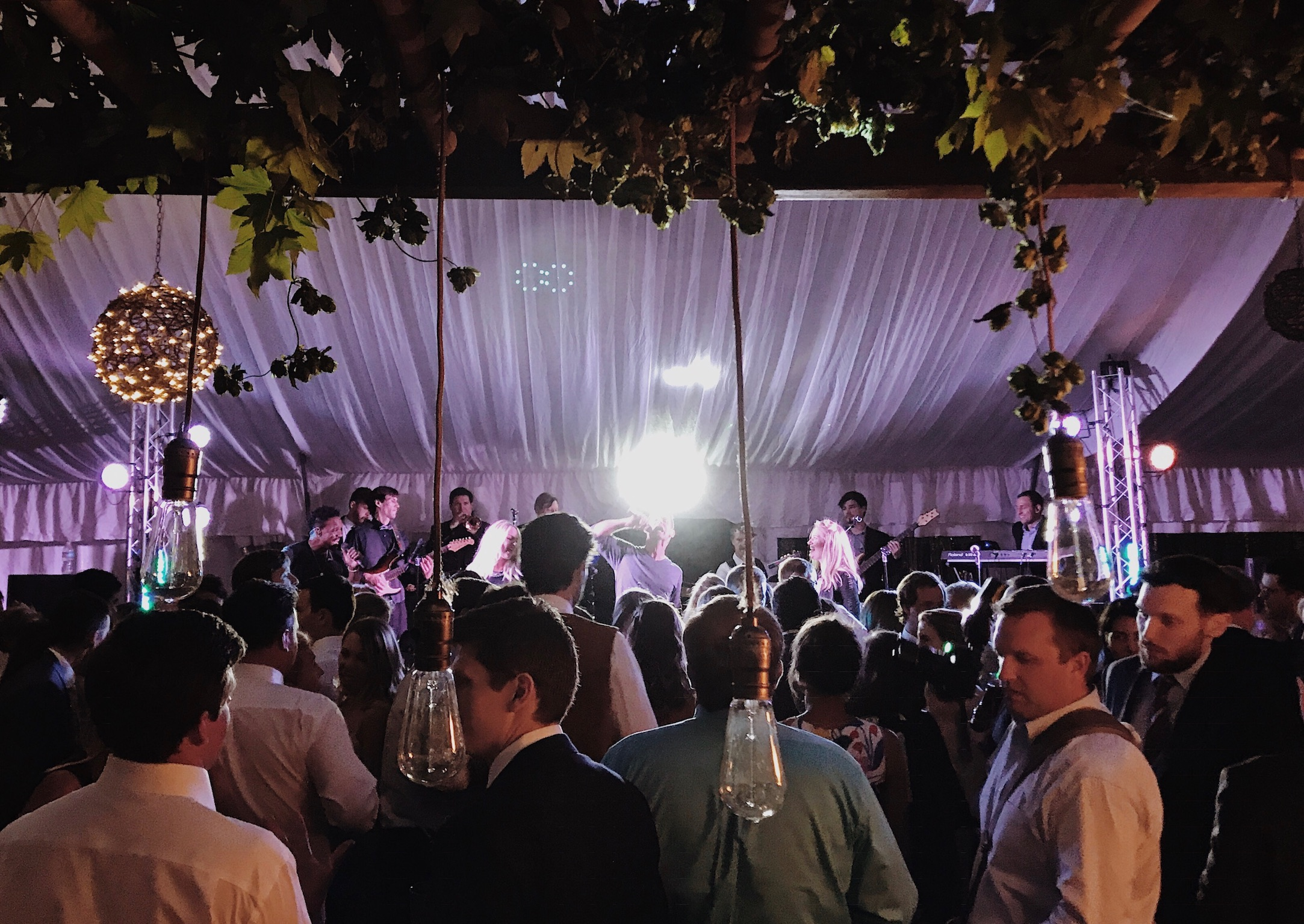 Live Music In Denver Hire The Best And Start Celebrating