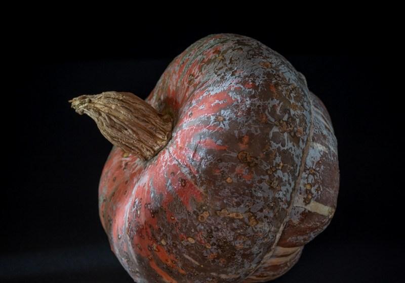Nudeln mit Salbei-Kürbissauce und Ziegenkäse