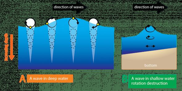 Circular Motion Diagram