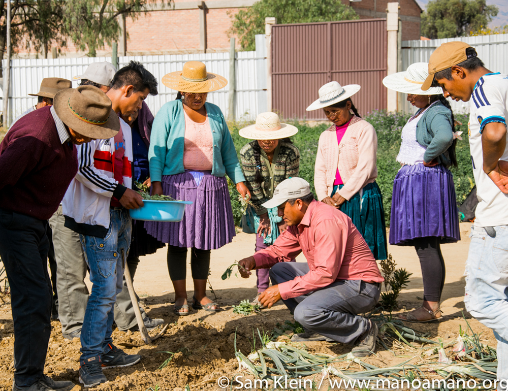 Food Stability for Bolivian Farmers – Alternative Gifts
