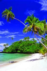 surf, samoa, beaches, samoa, surf samoa, samoa surf