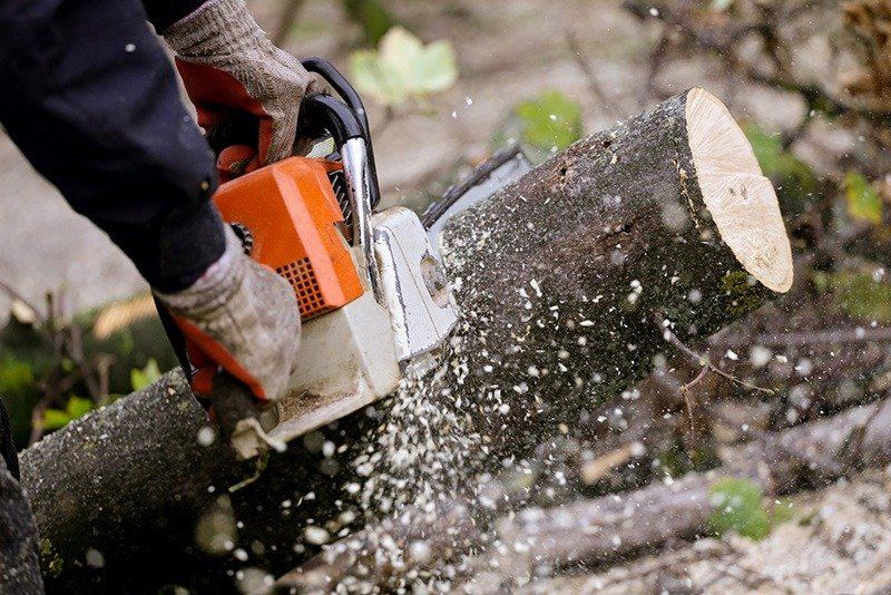 signs-of-a-dull-saw-chain-what-will-happen-if-the-chainsaw-is-worn-out
