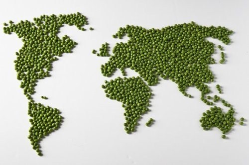 World Peas! We've achieved it!
