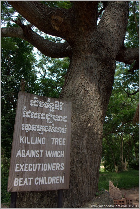The tree where children were executed