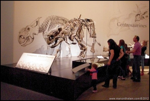 Child on a leash, Royal Tyrell Dinosaur Museum, Drumheller, Alberta CANADA