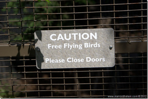 Caution Free Flying Birds Please Close Doors Sign