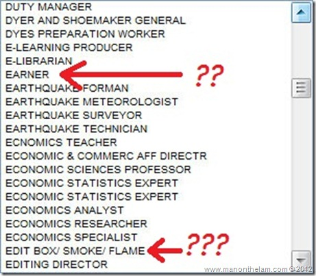Funny Visa Application Job Titles 30