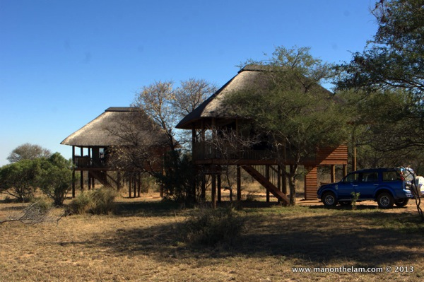 Nthambo Tree Camp South Africa 246
