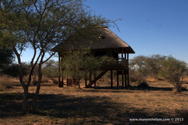 Nthambo Tree Camp South Africa 247
