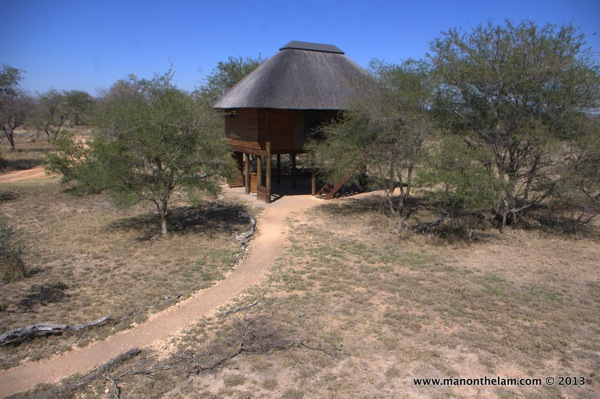 Nthambo Tree Camp, South Africa safari camp