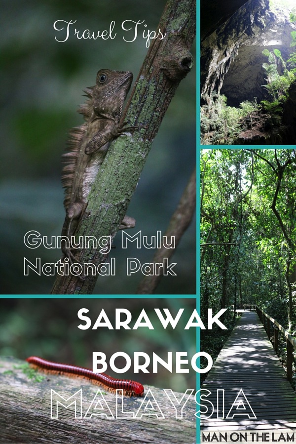 Gunung Mulu National Park and Mulu Caves  1