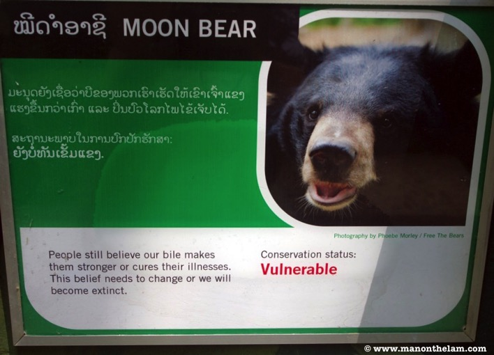 Free the Bears Laos Rescue Centre Moon bear conservation status vulnerable