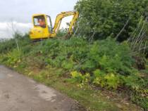 Removal of Some aterminated sand - Maldon District Council 8