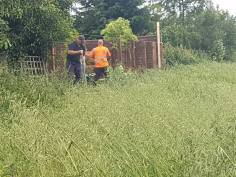 Removal of wire boundary fence & posts (dengie) before 4