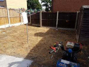 Rotavating existing garden Basildon preparing to lay turf 1
