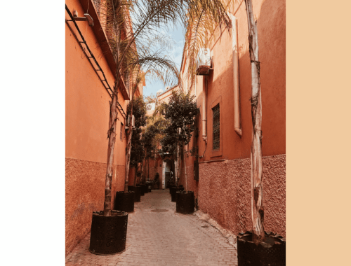 Marrakech City Guide Part II