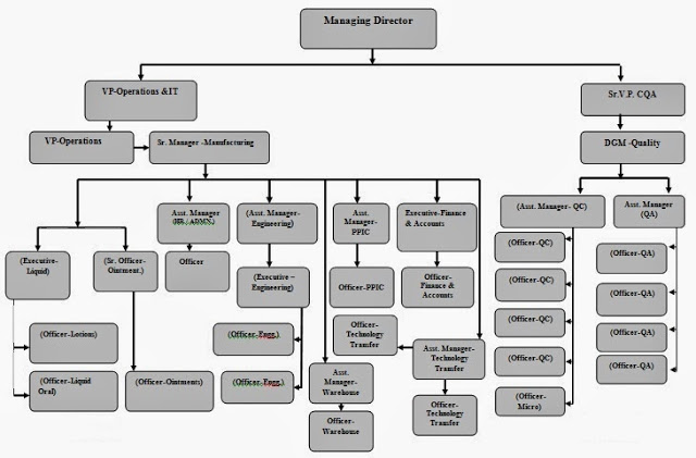 The Structure & Departments of a Pharmaceutical Company