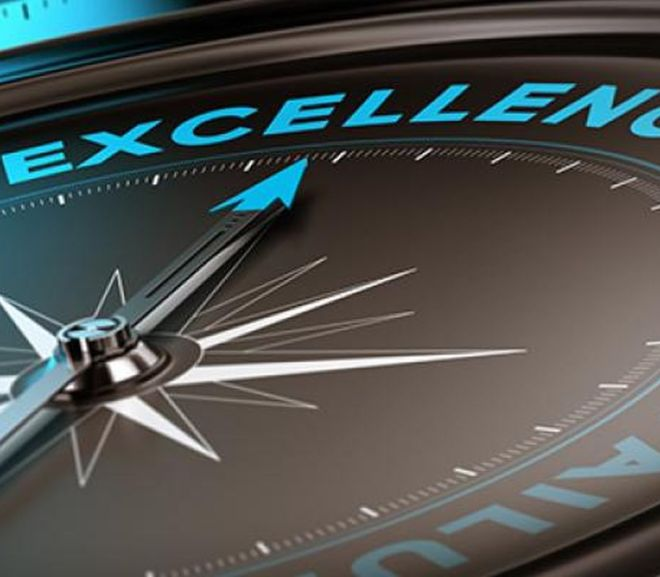 Operational Excellence: Business Function or Core Capability?