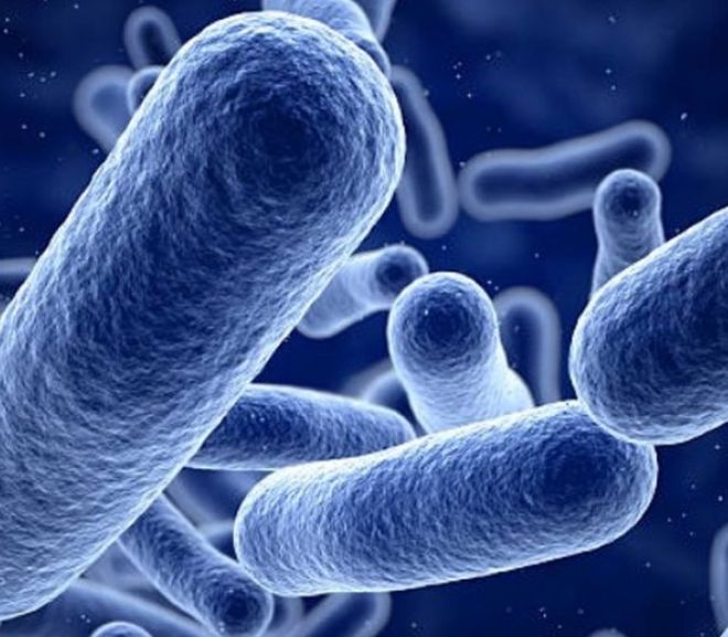 Polymers created with light to fight bacteria
