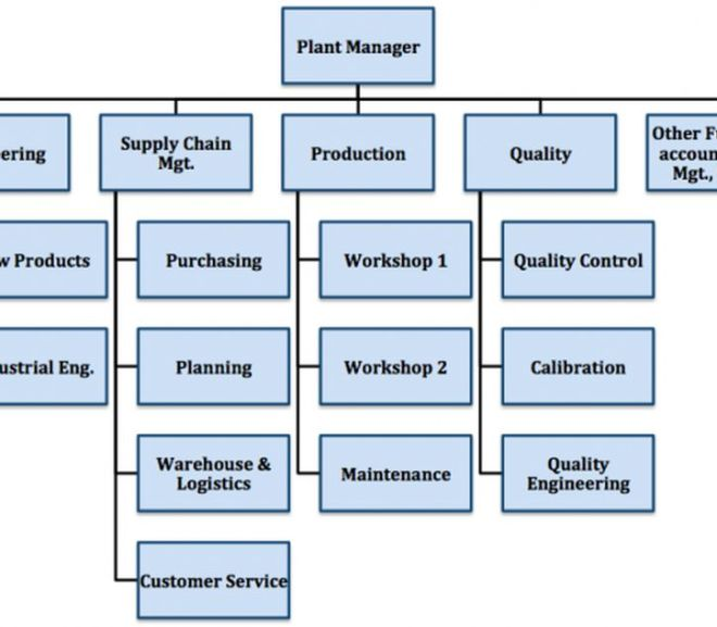 Examples of Industrial Organizational Structure
