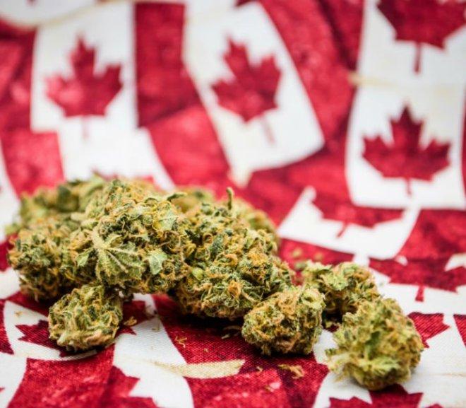 Top Canadian Cannabis Companies