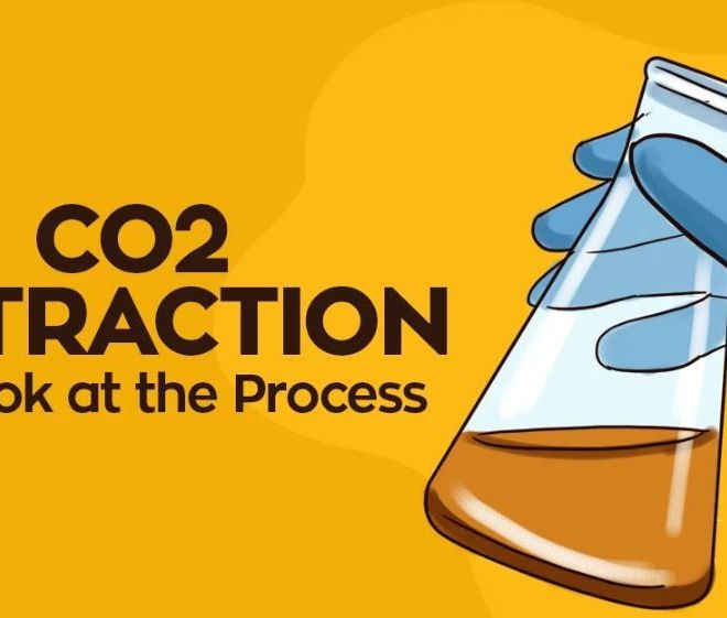 CO2 EXTRACTION: A LOOK AT THE PROCESS