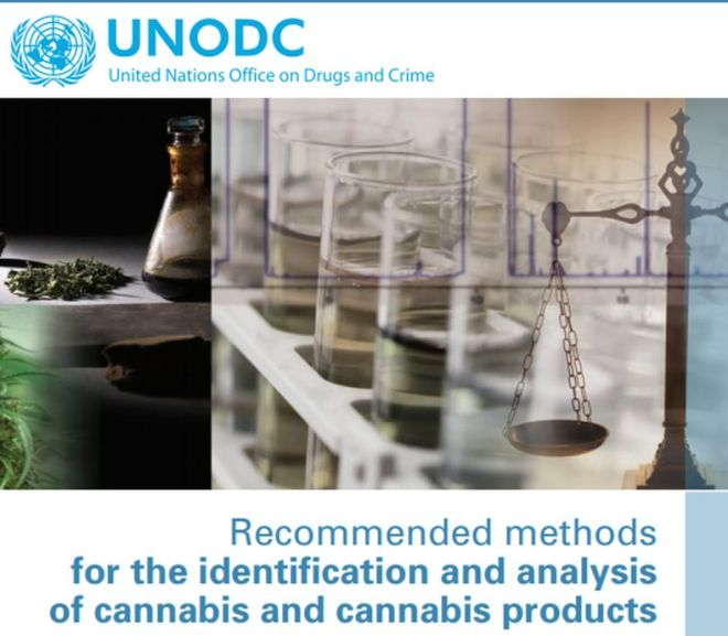 Recommended methods for the identification and analysis of cannabis and cannabis products – UN Fee PDF Download