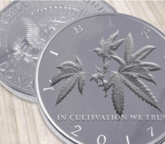 Cannabis: Cultivation cost control: The competitive advantage