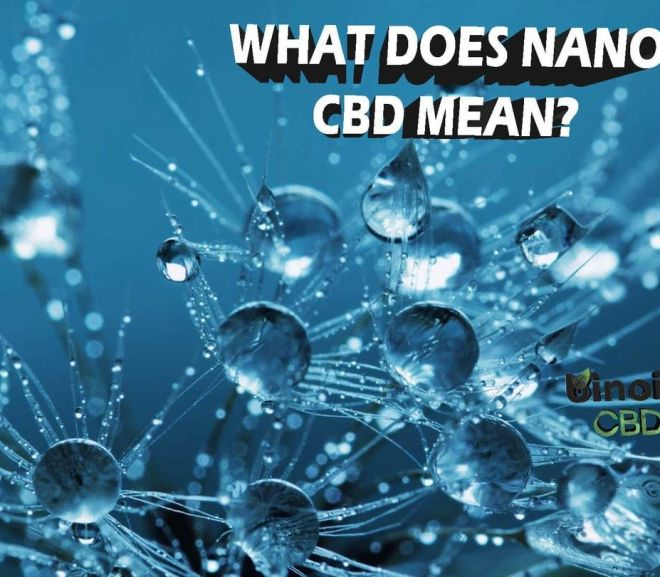 What Does Nano CBD Mean?