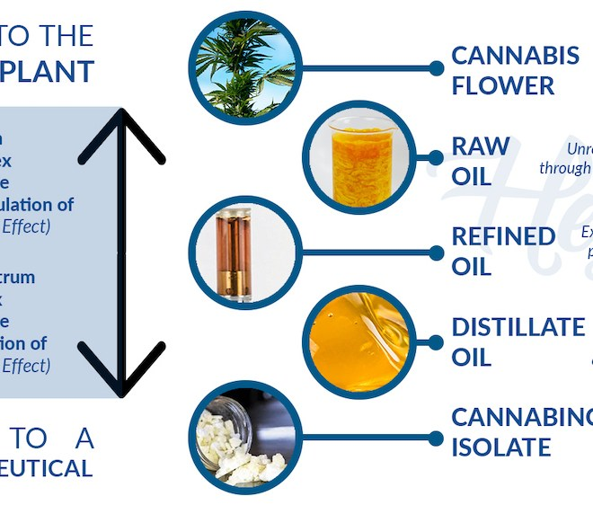 Distillate vs Full-Spectrum Cannabis Oil and Everything In-Between