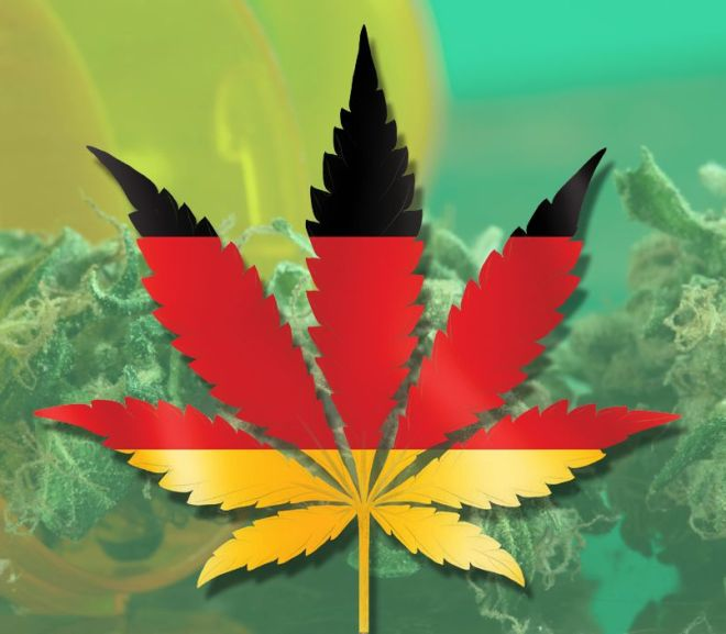 What Does The Average German Cannabis Patient Look Like?