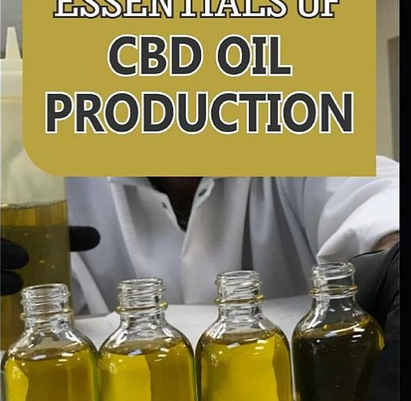 The Ultimate Guide to Starting a Profitable CBD Oil Production – BOOK
