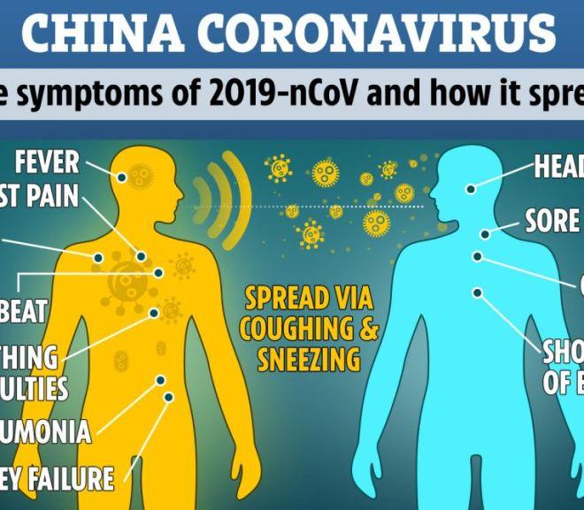Coronavirus:  Can Cannabinoid help?
