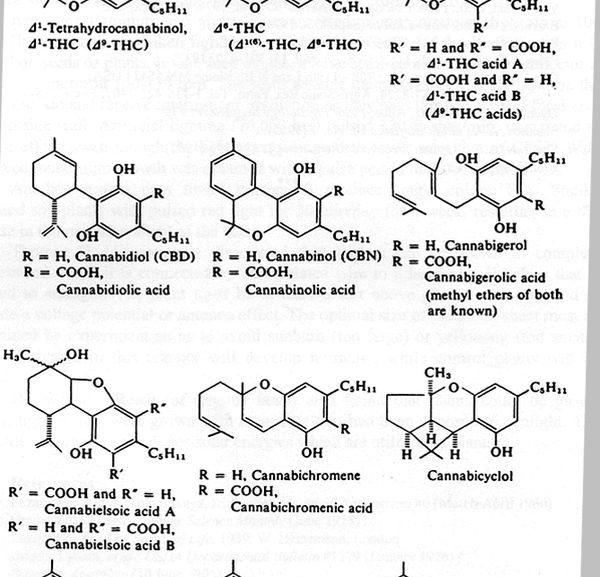 Cannabinoid Chemistry