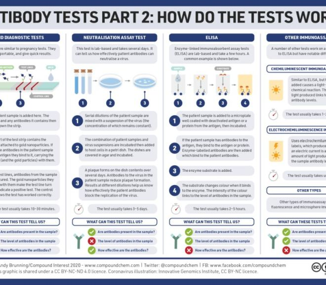 Antibody tests, part 2: How do antibody tests work?