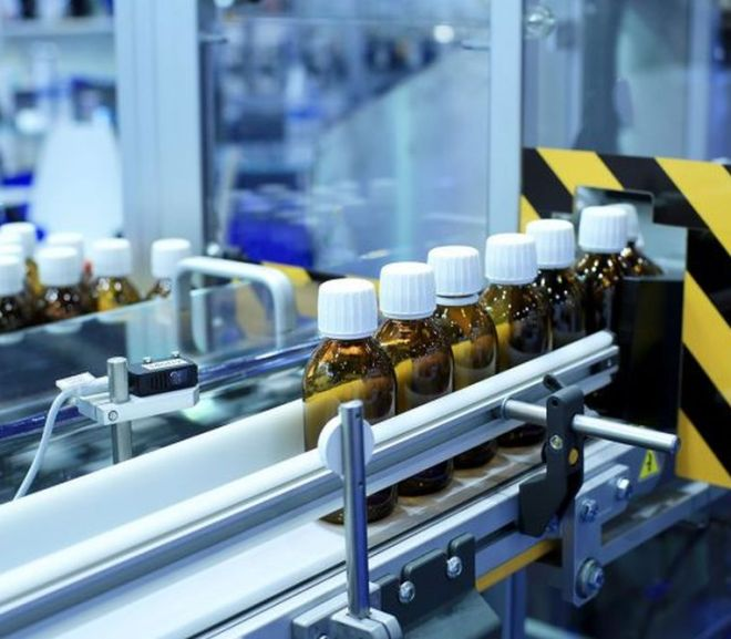 GMP Inspection of Manufacturers of Veterinary Medicines in the Context of COVID-19