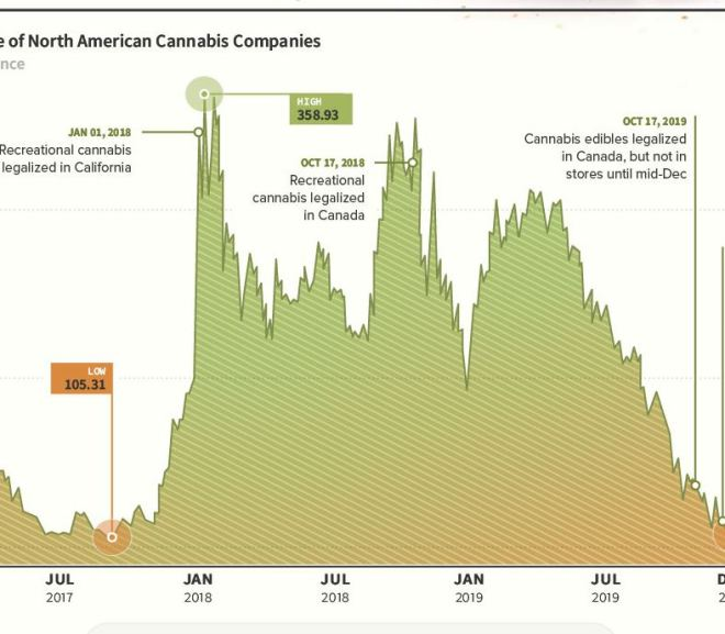 The Dramatic Rise and Fall of Cannabis Company Stocks