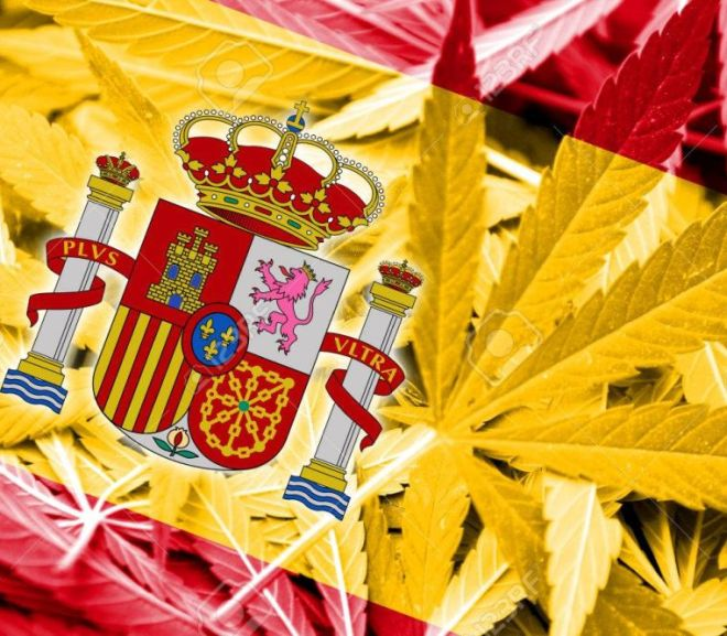 Cannabinoid drugs, medicinal cannabis and opioid drugs in Spain – a legal guide