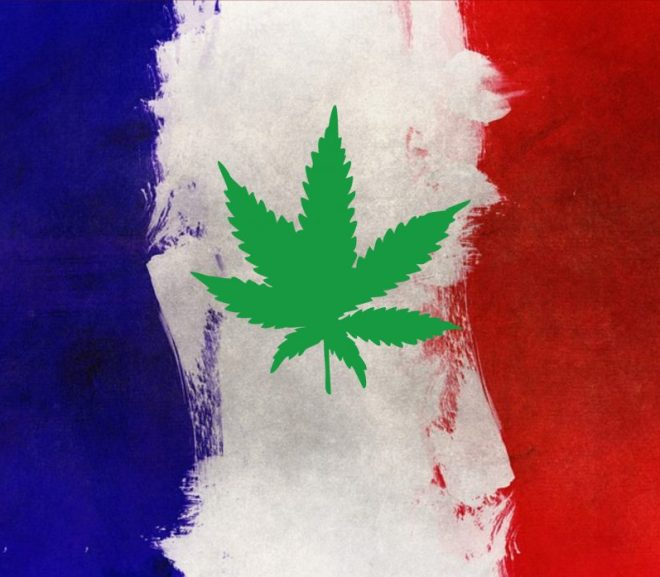 Applications open to supply France with free medical cannabis via pilot program
