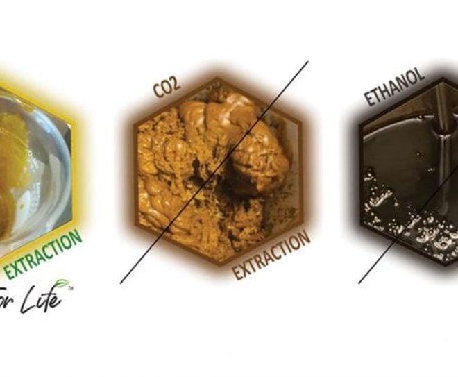 "Cannabis:  The R134a ""tetrafluoroethane"" extraction"