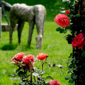 ebook giardini milano