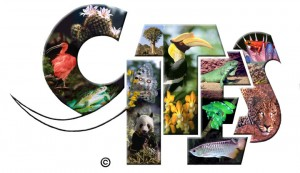 CITES helps regulate international trade in threatened species