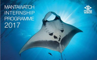 Vote for the 2017 MantaWatch Interns