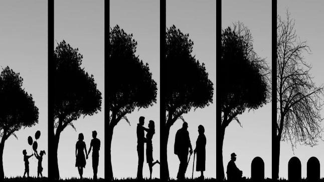 معنى الموت؛ معنى الحياة