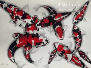 Cover: A Koi life.